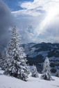 Germany, Bavaria, Chiemgau, Chiemgau Alps, Sachrang, Spitzstein in winter - HAMF00267