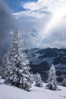Germany, Bavaria, Chiemgau, Chiemgau Alps, Sachrang, Spitzstein in winter - HAMF00267