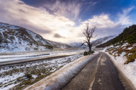 United Kingdom, Scotland, Highlands, empty road in winter - SMAF00935