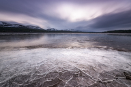 United Kingdom, Scotland, Highlands, Cairngorms National Park, Loch Morlich, ice covered - SMAF00938