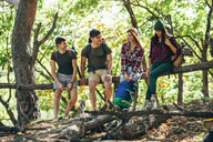 Full length of friends sitting on wooden log in forest - FSIF01508