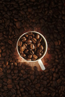 Cup of roasted coffee beans - JTF00912