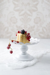 Lemon ice cream cake with red currants and blackberries - MYF02010
