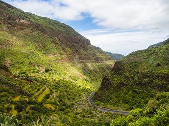 Spain, Canary Islands, Gran Canaria, Barranco de Guayadeque - AMF05662