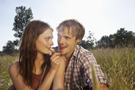 Girlfriend feeds her boyfriend a cheery amongst the timothy grass - FSIF02902