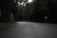 A curved road - FSIF02986