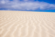 Spain, Canary Islands, Fuerteventura, dune - SIPF01937
