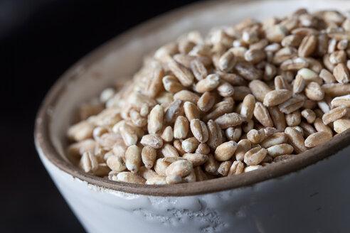 Bowl of spelt grains, close-up - CSF28988