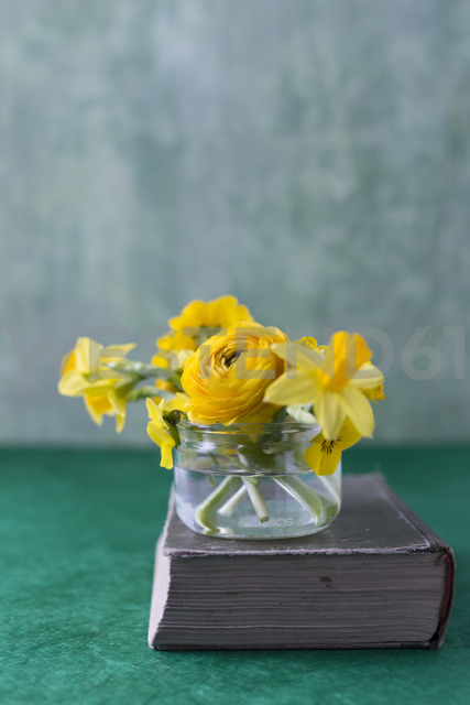 Persian buttercup, daffodil, primrose and horned violet in glass on a book - MYF02013