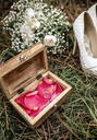 Close-up of wedding rings over red flower petals inside a casket in grass - DAPF00918