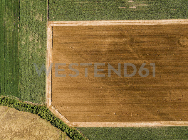 Serbia, Vojvodina, agricultural fields, aerial view at summer season - NOF00005