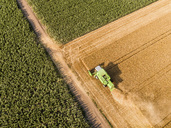 Serbia, Vojvodina. Combine harvester on a field of wheat, aerial view - NOF00008