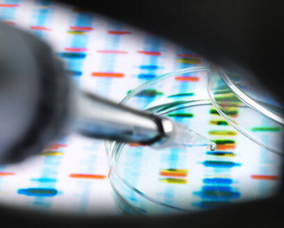 Sample of DNA being pipetted into a petri dish over genetic results - ABRF00109