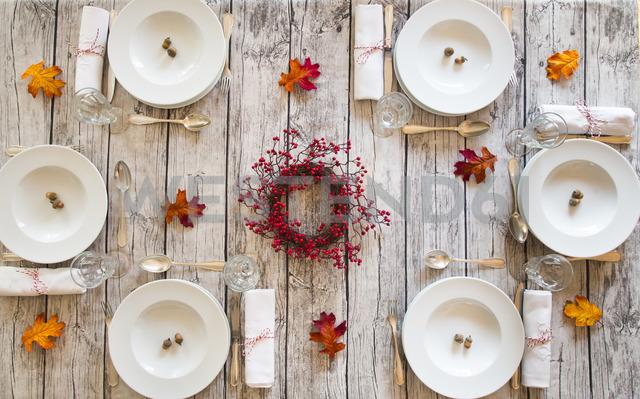 Autumnal laid table - LVF06737