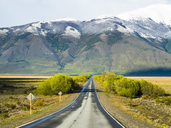 Argentina, Patagonia, El Calafate, Santa Cruz Province, road near Lago-Argentino - AMF05663
