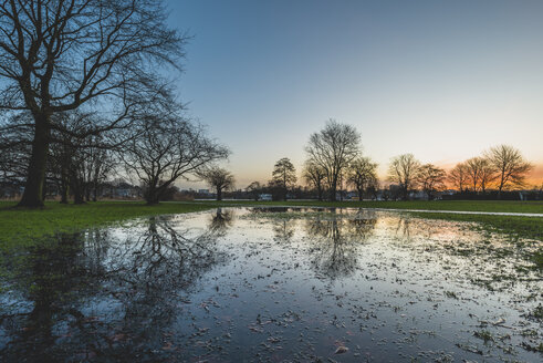 Germany, Hamburg, puddle in Alsterpark in the evening - KEBF00754