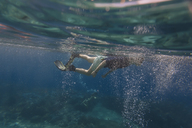 Underwater shot of man with fins and snorkeling - KNTF01022