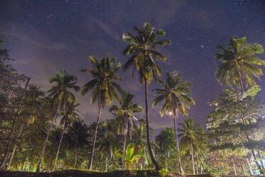 Thailand, Phi Phi Islands, Ko Phi Phi, palm trees and starry sky at night - KKAF00900