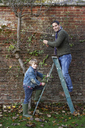 Father and son working in garden - CAIF00850