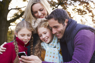 Family using cell phone outdoors - CAIF00934