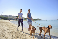 Young couple walking on the beach with dog - ECPF00180