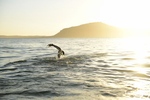 Man swimming in the sea in backlight - ECPF00204