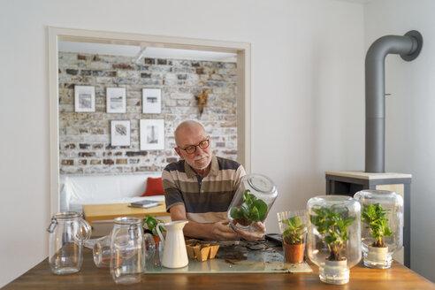 Senior man making glass biotopes at home - LAF01973
