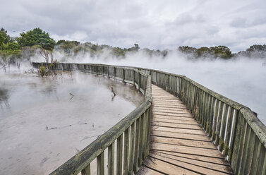 New Zealand, North Island, Rotorua, boardwalk through geothermal area - MRF01808