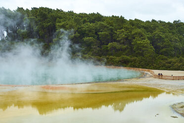 New Zealand, North Island, Wai-O-Tapu, Champagne Pool - MRF01817
