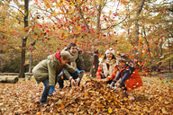 Family playing in autumn leaves - CAIF02311