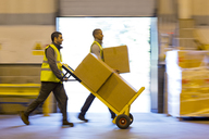Workers carting boxes in warehouse - CAIF02805