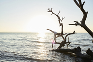 Young woman practicing yoga on a fallen tree in the sea at sunset - IGGF00444