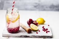 Fruit infused water with lemon slices, crushed pomegranate seeds and sparkling water - SBDF03474