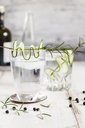 Gin Tonic with rosemary and cucumber - SBDF03477