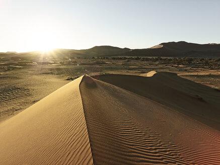 Africa, Namibia, Namib-Naukluft National Park, Namib desert, desert dunes - CVF00201