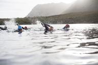 Triathletes swimming - CAIF03823