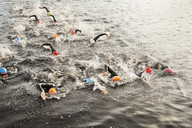 Triathletes swimming in water - CAIF03838