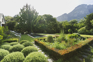 Lush sunny green garden with mountain view - HOXF00447