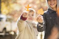 Boys holding golden autumn leaves - HOXF00594