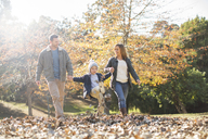 Family holding hands and walking in autumn leaves - HOXF00657