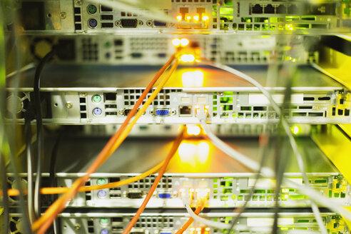 Close up server room cables - HOXF00822