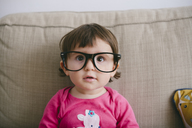 Portrait of staring baby girl wearing oversized glasses - GEMF01899