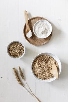 Rye ears, rye flakes, rye flour and rye grains - EVGF03284
