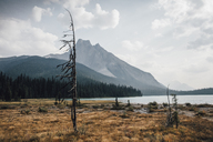 Canada, British Columbia, Columbia-Shuswap A, Rocky Mountains, Walcott Peak, Yoho National Park - GUSF00331