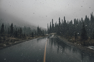 Canada, British Columbia,  Yoho National Park, Yoho Valley Road, snow fall - GUSF00337