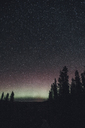 Canada, British Columbia, Liard River Hot Springs Provincial Park, Northern Lights, starry sky at night - GUSF00361