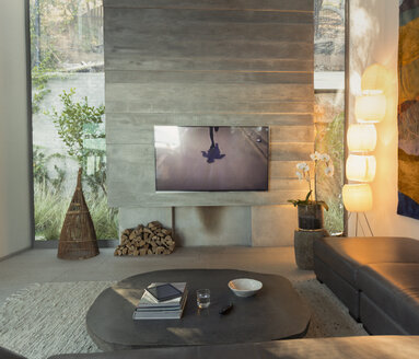 Television in modern, luxury home showcase interior living room - HOXF01325