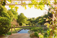Tranquil, sunny summer green garden with swimming pool - HOXF01376