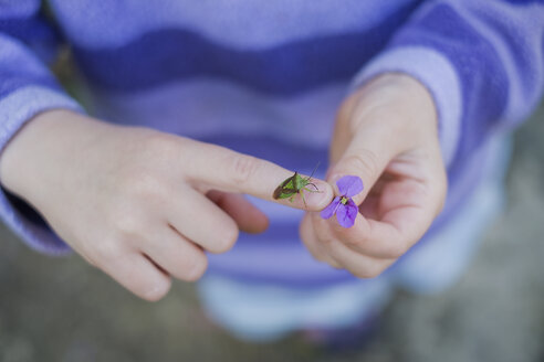 Close up girl with insect on hand holding purple flower - HOXF01448