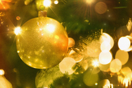 Close up golden ornament and string lights on Christmas tree - HOXF01868